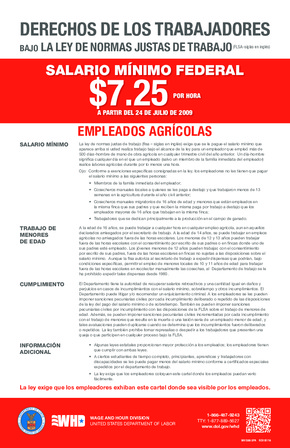 Agricultural Employees FLSA Rights (Spanish) PDF