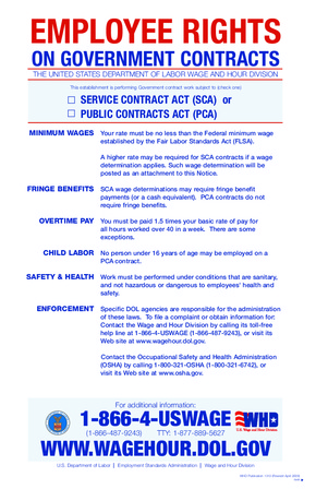 Working on Government Contracts PDF