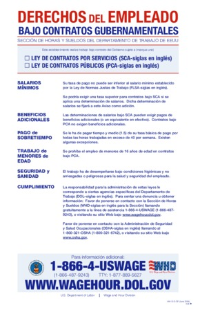 Free Federal Working on Government Contracts (Spanish) PDF