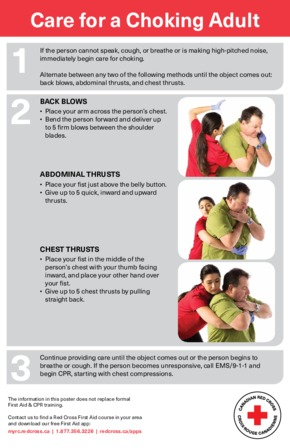 Free First Aid Red Cross Adult Choking PDF