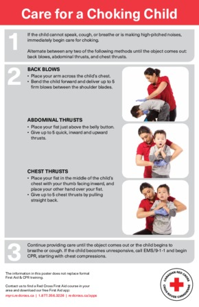 Free First Aid Red Cross Child Choking PDF