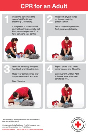 Free First Aid Red Cross Adult CPR PDF
