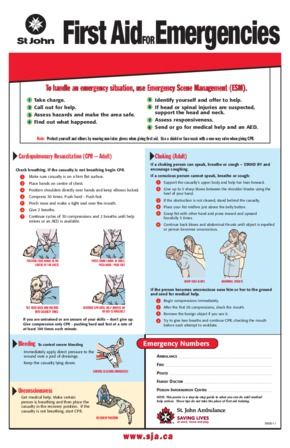 Free First Aid Adult Emergency First Aid PDF