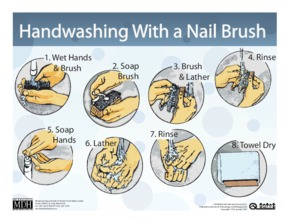 Free Minnesota Handwashing With a Nail Brush - Food Establishments PDF