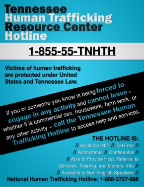 Free Tennessee Tennessee Human Trafficking Resource Center PDF