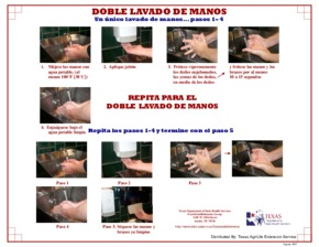 Free Texas Texas Double-Handwashing Poster (DOBLE LAVADO DE MANOS) (Spanish) PDF (Health Notice Poster)