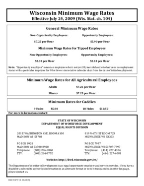 Free Wisconsin Minimum Wage Rates (English) PDF (Minimum Wage Law Poster)
