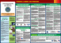 All-in-one federal labor law poster