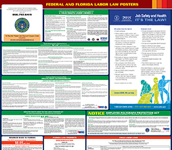All-in-one florida labor law poster